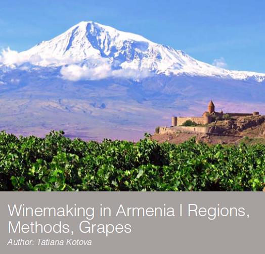The Evolution of Winemaking in Armenia