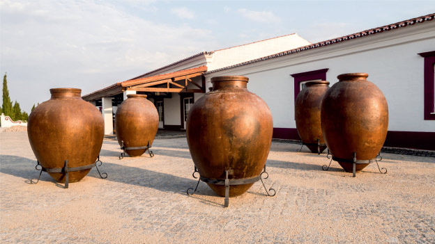 Traditional winemaking in Talha Amphorae